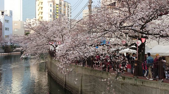 Oookagawa Promenade