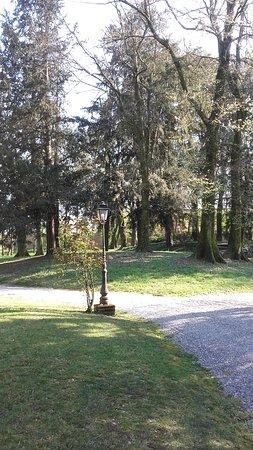 Villa Bottini - La Limonaia: Scorcio del parco