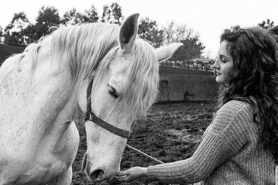 Mougas, Ισπανία: Una de las profesoras de el Picadero o Rancho dándole de comer y enseñando a Far, la portentosa yegua de pura sangre española que tienen.