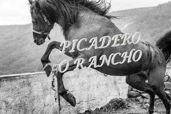 Mougas, España: Picadero O rancho!!!!