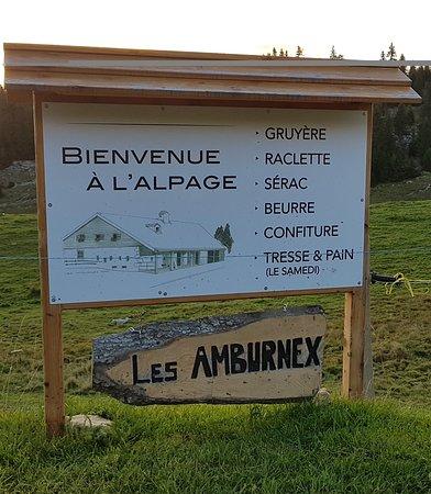 Vaud, İsviçre: Welcome Sign