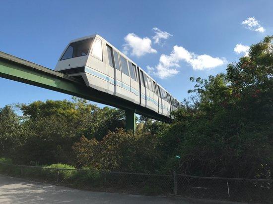 Zoo Miami: Monorail