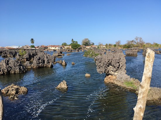 Hike into the coral garden