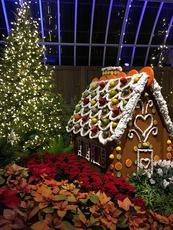 Phipps Conservatory Christmas 2019.Phipps Conservatory And Botanical Gardens Pittsburgh