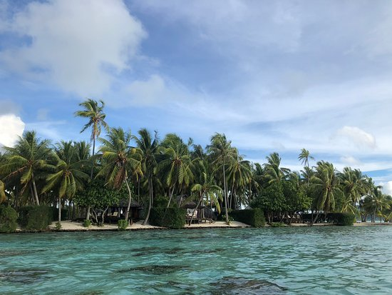 Vahine Island ile privée Resort & Spa : View from water to some of the bungalows and beach suites