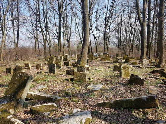 Jewish Cemetery in Szczebrzeszyn