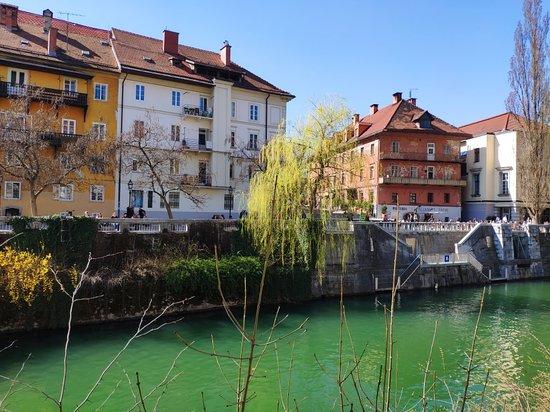 Ljubljana, Szlovénia: Una città di poche aspettative capace di lasciarti senza parole Consiglio vivamente!🇸🇮