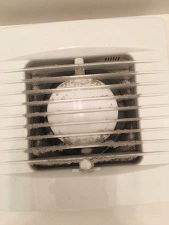 Mold/dust in the bathroom vent