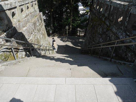 Takeo Shrine: 神社参道(上から)