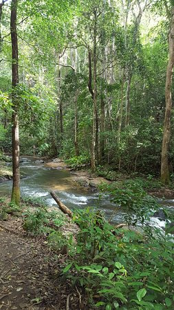 Doi Inthanon privattur med vandring og frokost fra Chiang Mai: Two hour hike with our guide, Book