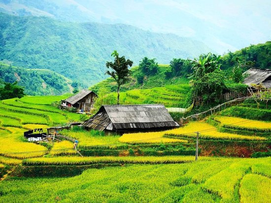 Go SaPa Trek-Tour : Breathtaking view of my village.