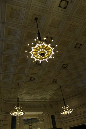 Shedd Aquarium: Gorgeous ceiling and chandeliers in the entry hall.