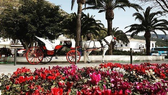 Low Cost Taxi Málaga