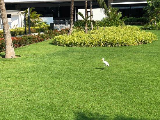 Hotel Riu Sri Lanka: It's really really beautiful place