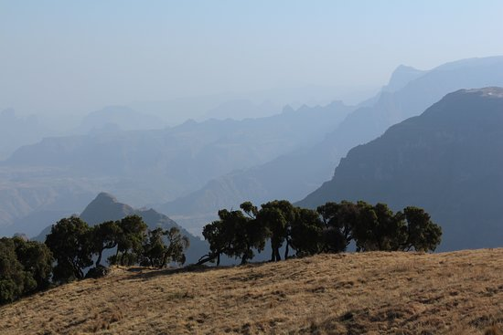 Ethiopia Explorer: Late afternoon view Simien Mountains National Park