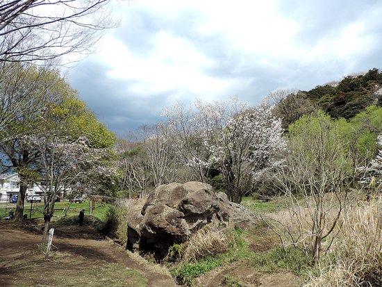 Kamakura Chuo Park
