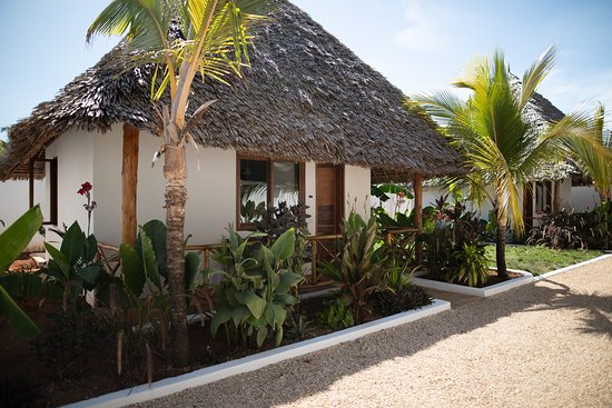 Aluna Nungwi: The gorgeous garden bungalow