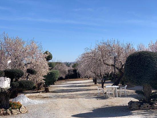 Alojamientos Rurales Cortijo El Helao