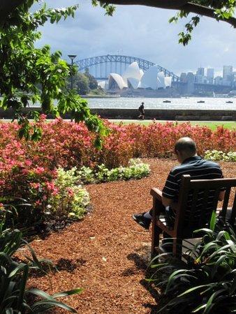 Sydney Bike Tours: Sydney Harbour Bridge and Sydney Opera House from the Royal Botanic Gardens.