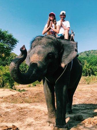 Phang Nga Elephant Park: ))