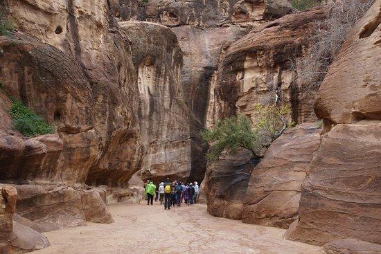 Petra: Le Siq