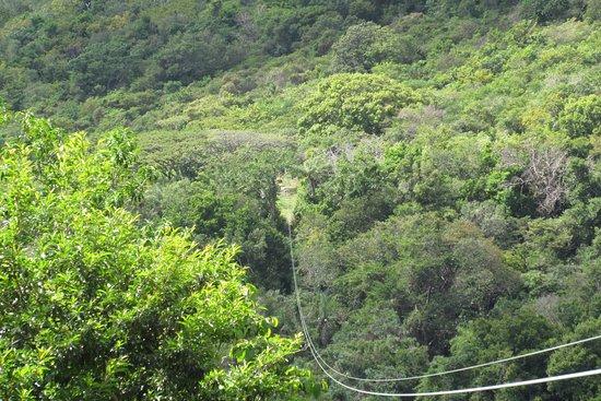 Recorrido con tirolina en San Cristóbal (confirmación con 48 horas de antelación) : First Line