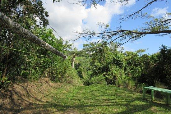 Recorrido con tirolina en San Cristóbal (confirmación con 48 horas de antelación) : Landing Area