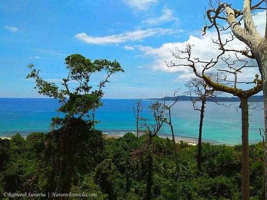 さっそくチェック:大ニコバル島大ニコバル島の旅行情報