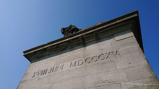 Memorial Waterloo 1815: Sockeln med lejonet knappt synbart