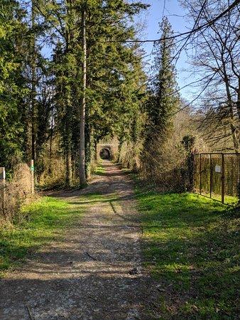 Villers-la-ville Foto