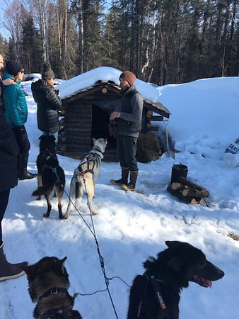 Our awesome guide Elliott telling us about caring for dogs during the Iditarod.  This stop along our ride was at a cabin like a check-point on the Iditarod trail.