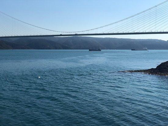 Traveller - Günlük İstanbul Şehir Turları
