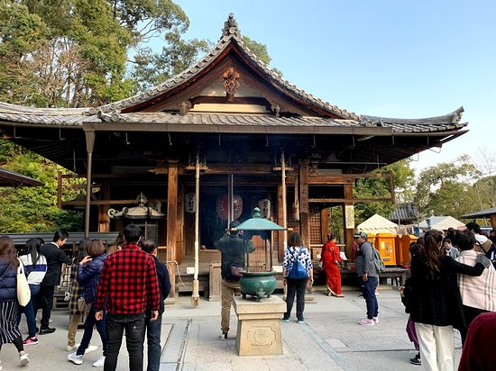 Kyoto Cultural Forest, Shrine and Temple Tour with Options: Golden Pavilion