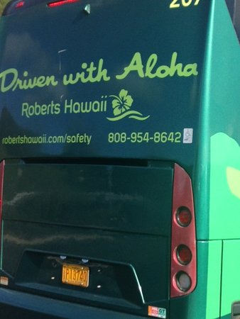 97dcfa44af Roberts Hawaii (Honolulu) - 2019 All You Need to Know BEFORE You Go ...