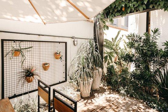 Jardim / área deck