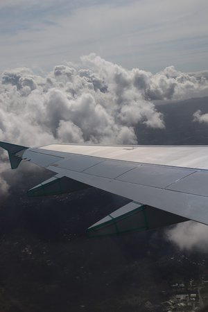 Air Canada: Nice wing