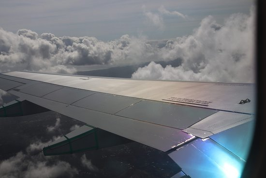 Air Canada: Nice wing. I like it!