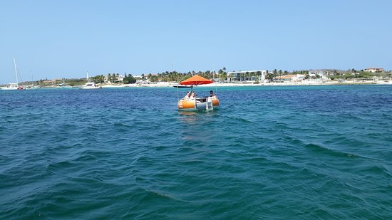 Octopus Sailing Charters: Octopus Aruba, Champagne Brunch, Afternoon Sailing, Sunset Cruise, Private Sailing, Boat Rental