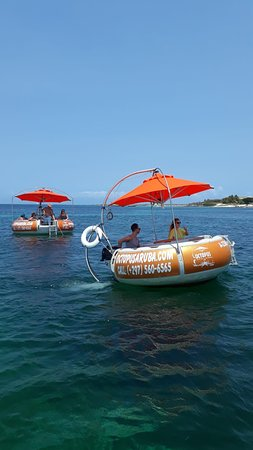 Octopus Aruba, Champagne Brunch, Afternoon Sailing, Sunset Cruise, Private Sailing, Boat Rental