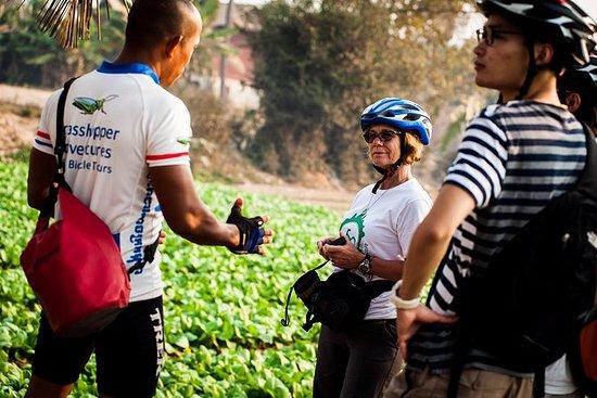 La campagne de Siem Reap en vélo