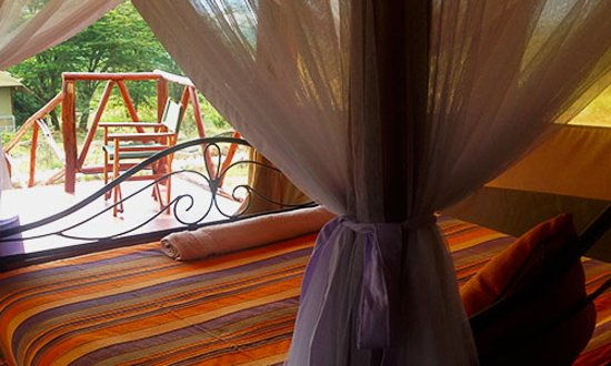 OUTSIDE VIEW FROM THE ROOM - Picture of Elangata Olerai Luxury Tented Camp, Masai Mara National Reserve - Tripadvisor