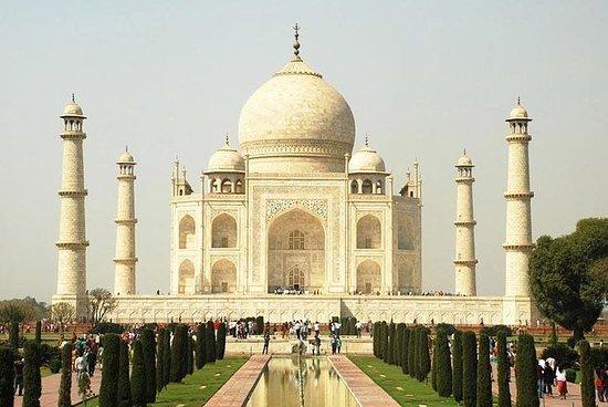 Taj Mahal All Inclusive Dagstur fra...