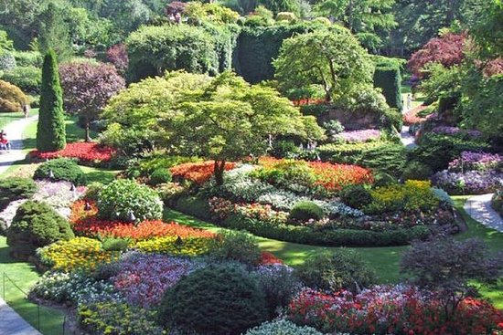 Butchart Gardens og City Tour