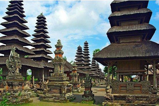 Tour de medio día a Bali: templo de...