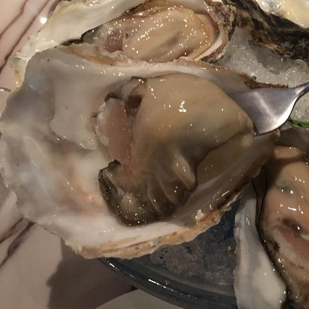 The Oyster House: 好肥美