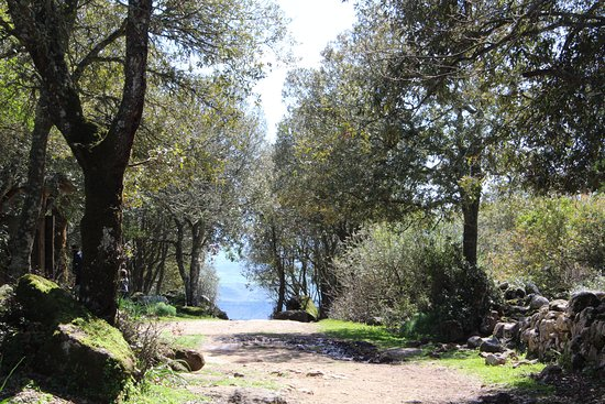 SLANG. Sardinia, senses & language