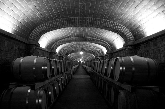 The Travelling Vineyard