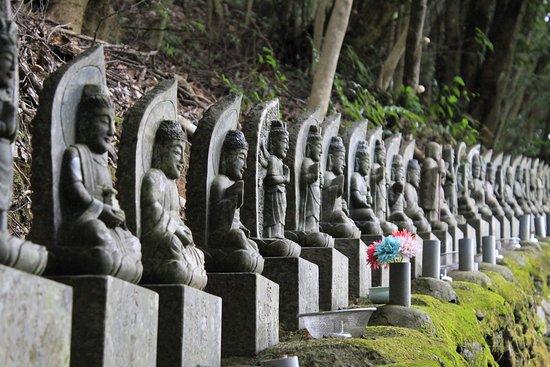 Taikoiwa Fudoson