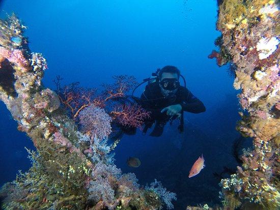Adventure Divers Bali: Wreck Diving the USS Liberty