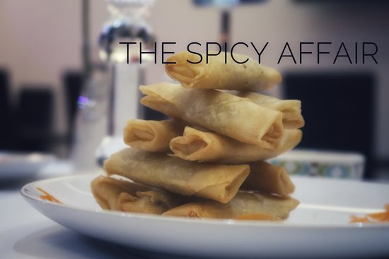 The Spicy Affair: Vegetable Spring Rolls